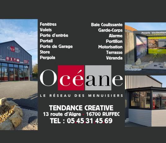 Pergolas, vérandas et stores par Tendance Creative